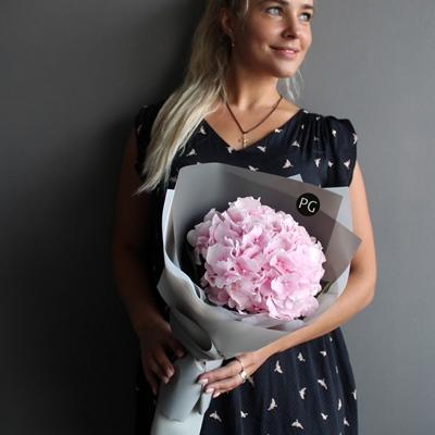 Hydrangea delivery to Russia